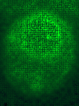a photomosaic image of a yeast cell expressing a GFP-fusion to the ER resident protein Pho86 comprised of cell images from the entire database  created: A. Carroll software: Mazaika concept: J. Falvo, N. Dephoure